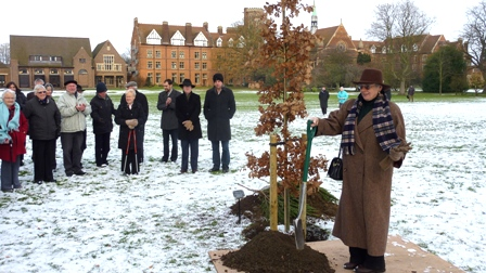 Homerton College tree planting 2 Dec 2010